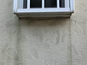 外壁の黒ずみ
